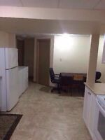 Large renovated apartment close to LU and airport