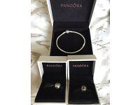 Brand new pandora bracelet - never worn!