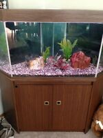 77 gallon corner tank with cabinet