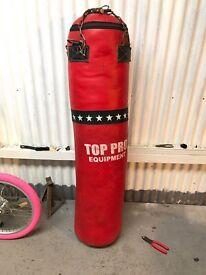 Punching/Boxing bag