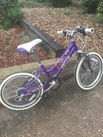 18 inch Bike PERFECT CONDITION