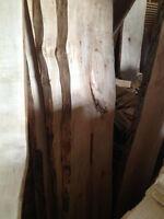 Live Edge Slabs and Lumber