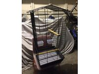 Small parrot cage 3ft x 1ft