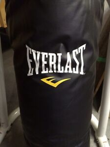 Everlast 100 lb Punching Boxing Kick Boxing Bag with Chains