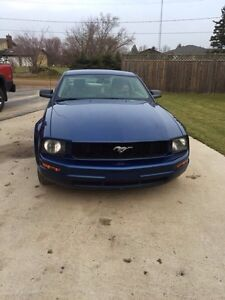 2006 Mustang V6 Coupe