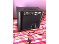 Eastcoast Guitar Amplifier