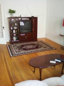Meuble de télé, bibliothêque, TV, en bois