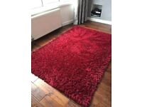 Large Deep Red Rug from Next (205 x 145)