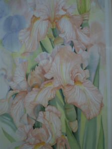 "Mary Dawn Roberts "" Velvet Petals "" Limited Edition Print Kitchener / Waterloo Kitchener Area image 8"