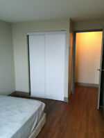 Two (2) bedroom furnished renovated condo-like aparment (sublet)
