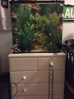 Aquarium for sale--- with or without stand!!!