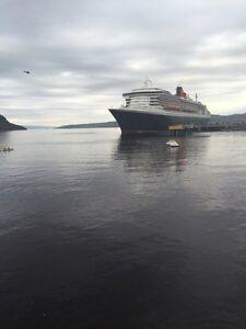 Logement de luxe 3 1/2 ville de la baie Saguenay Saguenay-Lac-Saint-Jean image 1