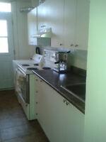 3 1/2 Apartment a louer Plateau Mont-Royal