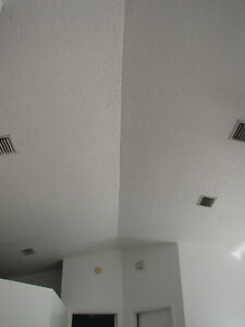 PAINTER HIGHLY EXPERIENCED, PROFESSIONAL -%-%-  LICENSED PAINTER North Shore Greater Vancouver Area image 8