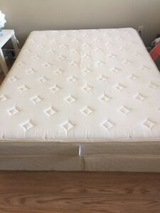 Clean queen mattress and box