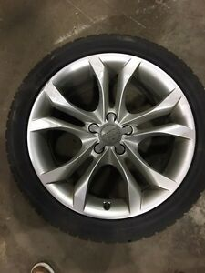 Audi winter tires and rims from s5 ,2013