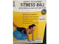 Everlast Fitness exercise/pregnancy ball