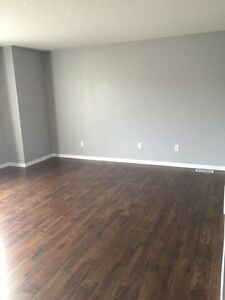 House for rent /lease. Available Nov 1st Kitchener / Waterloo Kitchener Area image 5