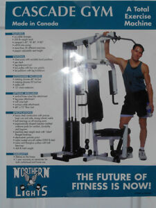 Northern Lights Gym Kitchener / Waterloo Kitchener Area image 7