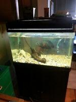 aquarium coin arondi