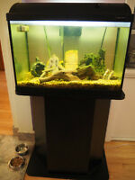 20 g Aquarium with stand and accessories