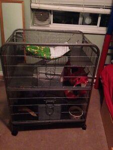 Multi story ferret/chinchilla cage