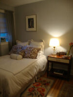 Beautifully Furnished 1 Bedroom + Office  in Summerhil/Rosdale
