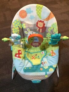 Bouncy seat-$20, snugly-$20, warming cover-$20