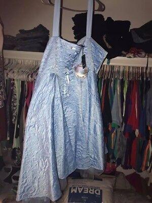 Plus Size Cinderella Dress (Torrid size 30 Disney Cinderella Corset Blue Womens Prom Party Ball)