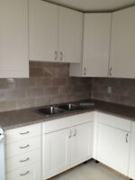 Renovated End Unit Orleans Townhouse For Rent