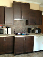 Beautiful 2BR apartment across from Victoria Park