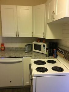 Fully Renovated Downtown Two Bedroom Suite