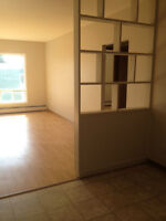 Bright & Sunny Open Concept, Coin Laundry, Storage, Heat Incl