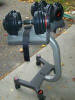Bowflex 552 Dumbbells and stand