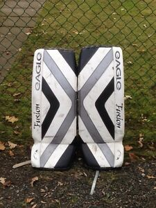 Eagle Fusion Goalie Pads
