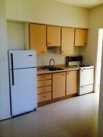 ***Bright and Clean*** 1 Bedroom Apartment Trent Hills