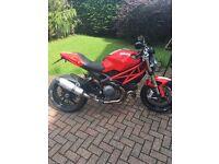 Ducati monster 1100 exhaust