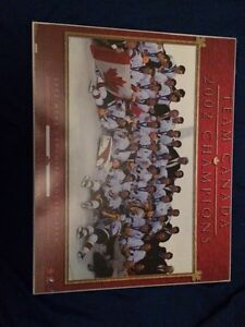 2002 men's championship olympic hockey team wall picture  St. John's Newfoundland image 1