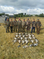 EARLY GOOSE HUNTS - DUCKS - BOOKING NOW