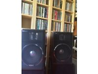 Technics-sb-f5 speakers