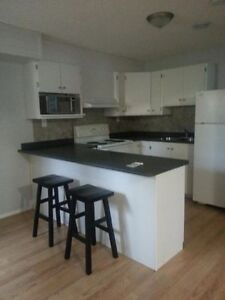 Newly Built 1 Bedroom  - Clean/Private/Peaceful