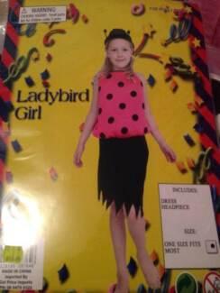 Lady Bird Costume