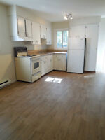 Newly renovated two storey, one bedroom apt. Avail. June 1st