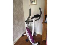 Kelly Holmes Fitness Exercise Bike