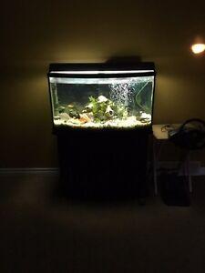 40 gallon now front aquarium  Sarnia Sarnia Area image 4