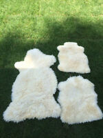 1 large and 2 smaller sheep skins