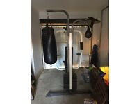Weider Sparring System Multi-Gym