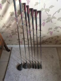 Howson Iron set with bag