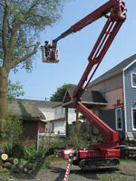 Tree Removal.. One Picture Says It All... Best Equipment! Safe!