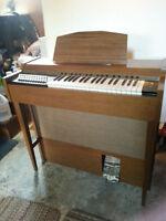 Small Organ